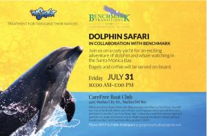 dolphin safari insight treatment