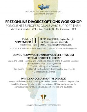free online divorce options training