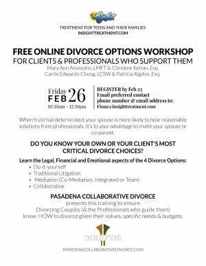Online Divorce Options WorkShop